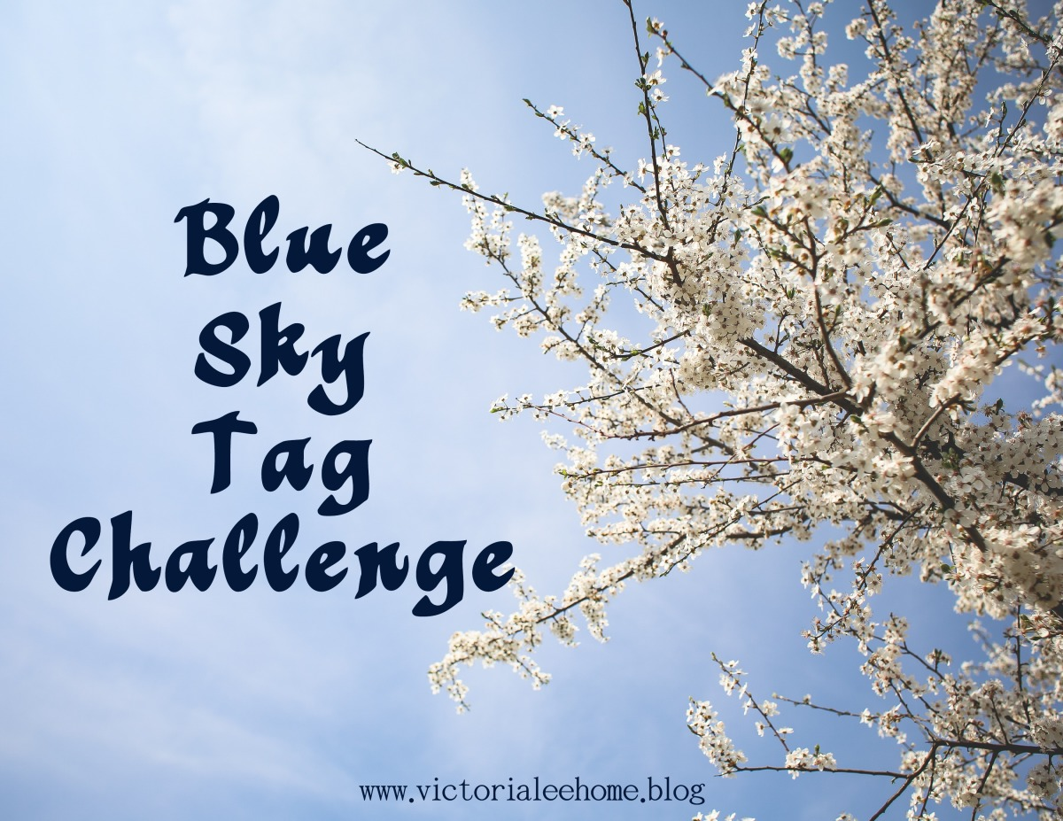 Blue Sky Tag Challenge